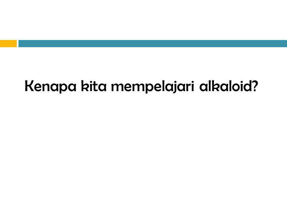 Efek farmakologis Alkaloid 1.Analgesik dan narkotik: morfin dan kodein 2.Stimulansia sentral: kofein 3.Anti asma: efedrin 4.Antihipertensi: reserpin 5.Relaksan otot halus: atropin dan papaverin 6.Relaksan otot skeletal: tubocurarin 7.dll