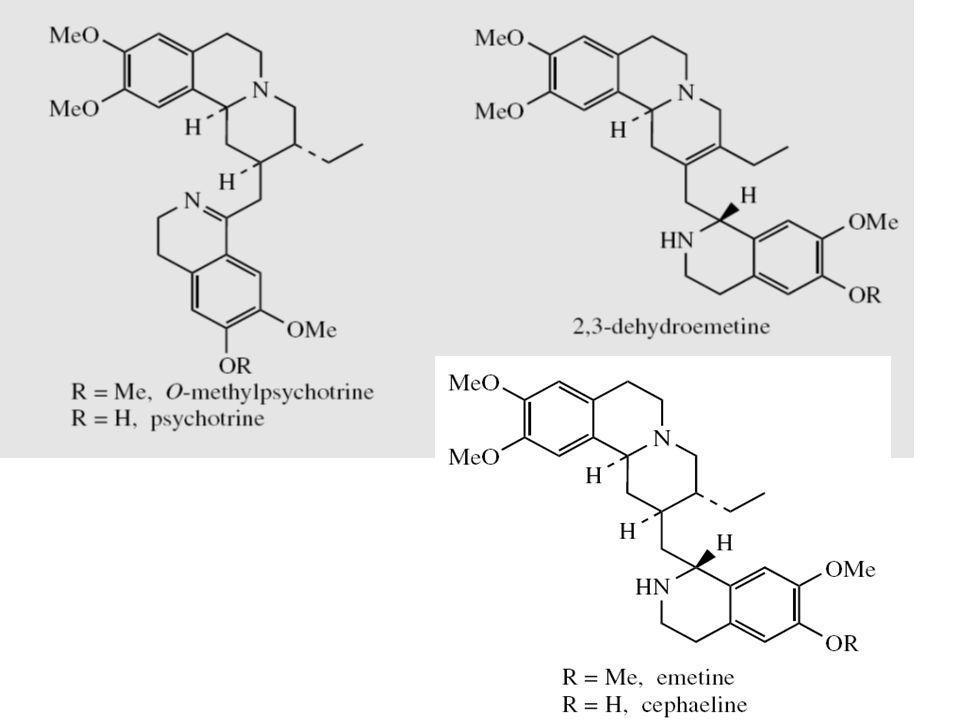 O-methypsychotrine: efek inhibisi sintesis protein kecil tapi menghambat HIV-reverse transcriptase