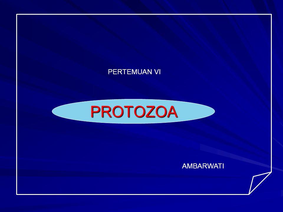 PROTOZOA Protozoa : parasit yg td 1 sel dg morfologi & fungsi yg lengkap Morfologi protozoa : inti & sitoplasma Reprouksi protozoa : 1.