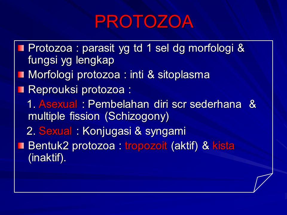 PROTOZOA Protozoa : parasit yg td 1 sel dg morfologi & fungsi yg lengkap Morfologi protozoa : inti & sitoplasma Reprouksi protozoa : 1. Asexual : Pemb