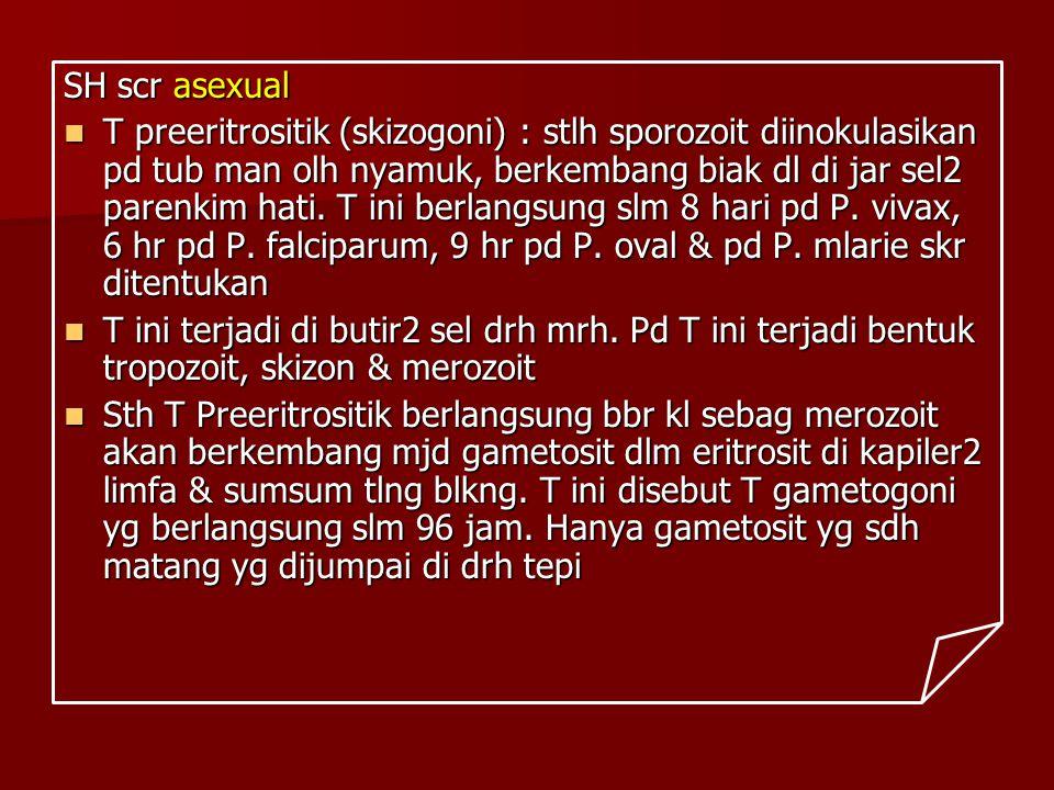 SH scr asexual T preeritrositik (skizogoni) : stlh sporozoit diinokulasikan pd tub man olh nyamuk, berkembang biak dl di jar sel2 parenkim hati. T ini
