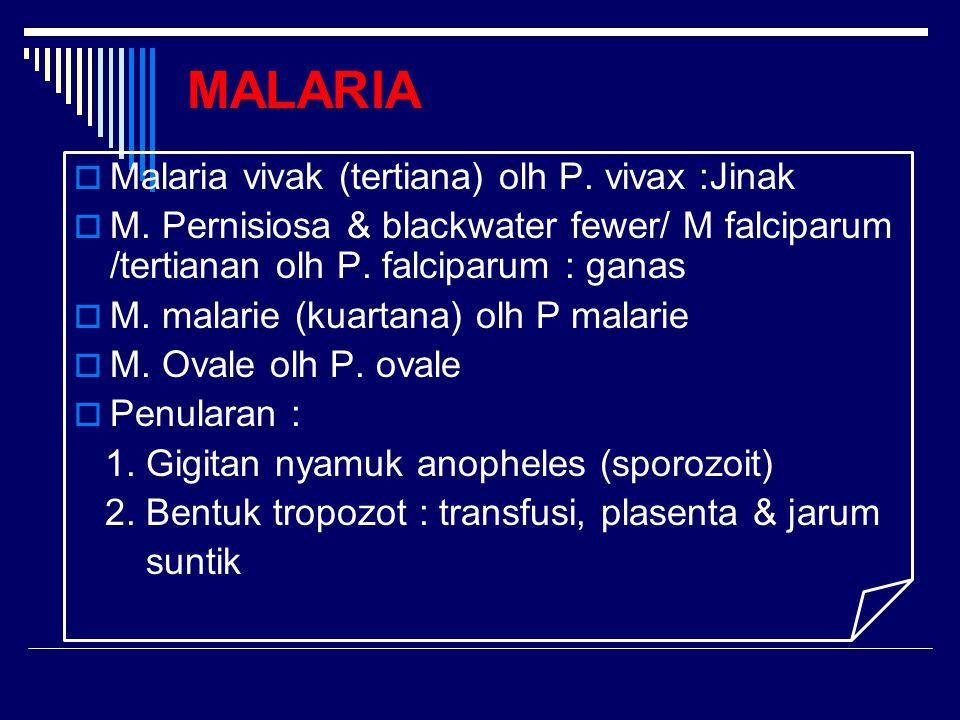 MALARIA  Malaria vivak (tertiana) olh P. vivax :Jinak  M. Pernisiosa & blackwater fewer/ M falciparum /tertianan olh P. falciparum : ganas  M. mala