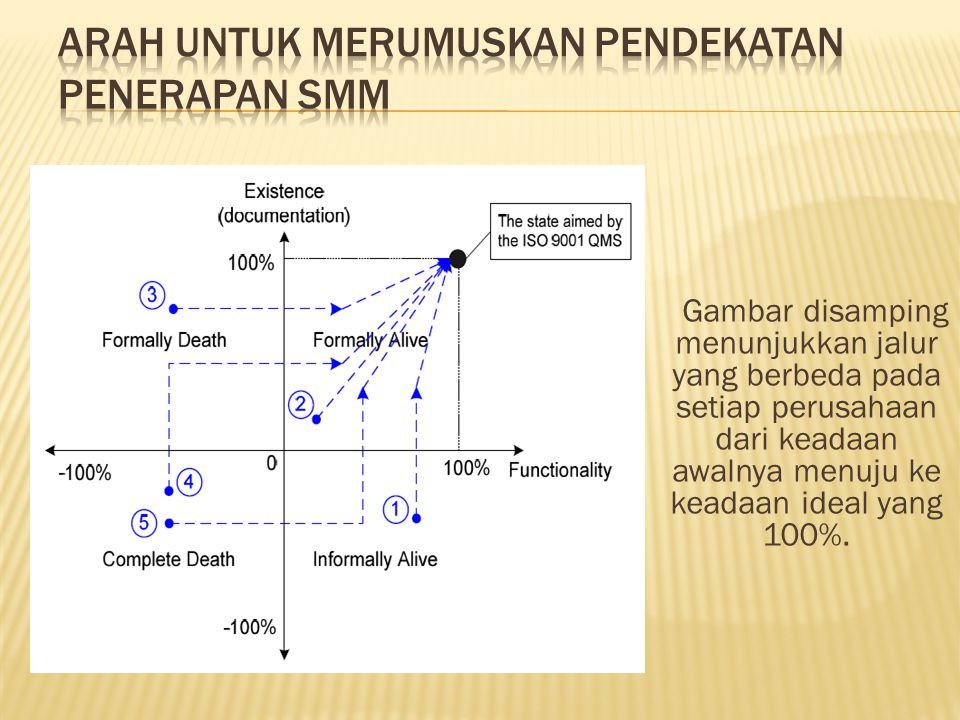 Ada banyak masalah yang harus diatasi dalam penerapan SMM menuju ke keadaan yang ideal.