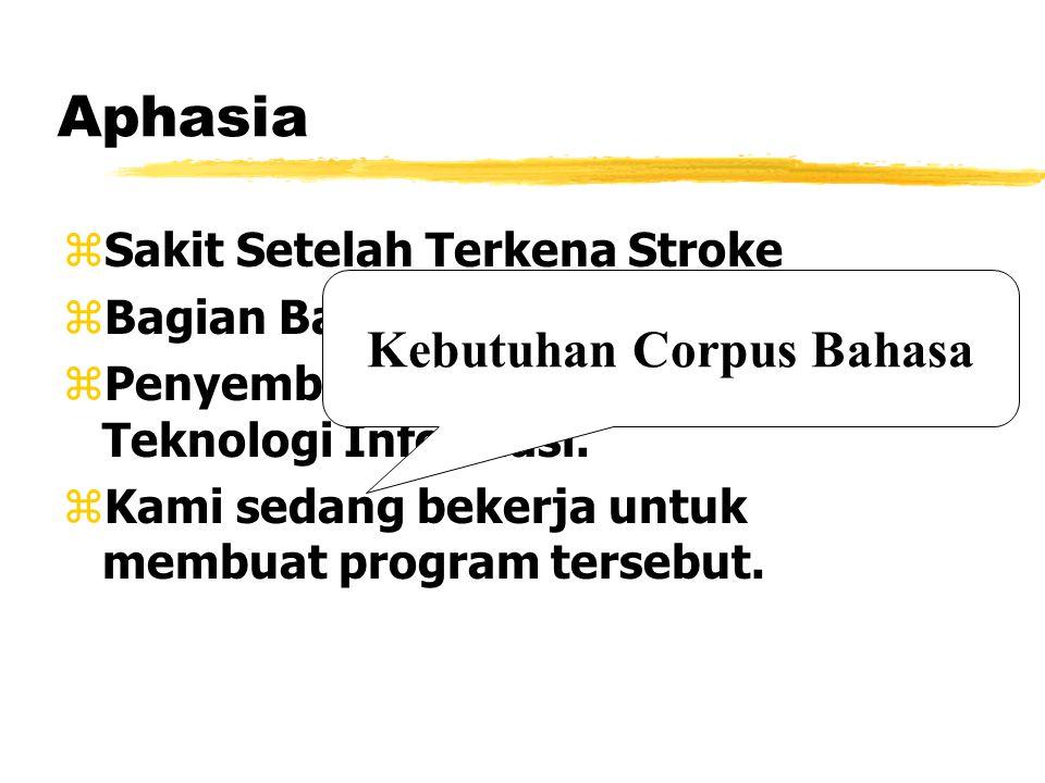 Aphasia zSakit Setelah Terkena Stroke zBagian Bahasa di Otak yang terkena. zPenyembuhan Dengan Bantuan Teknologi Informasi. zKami sedang bekerja untuk