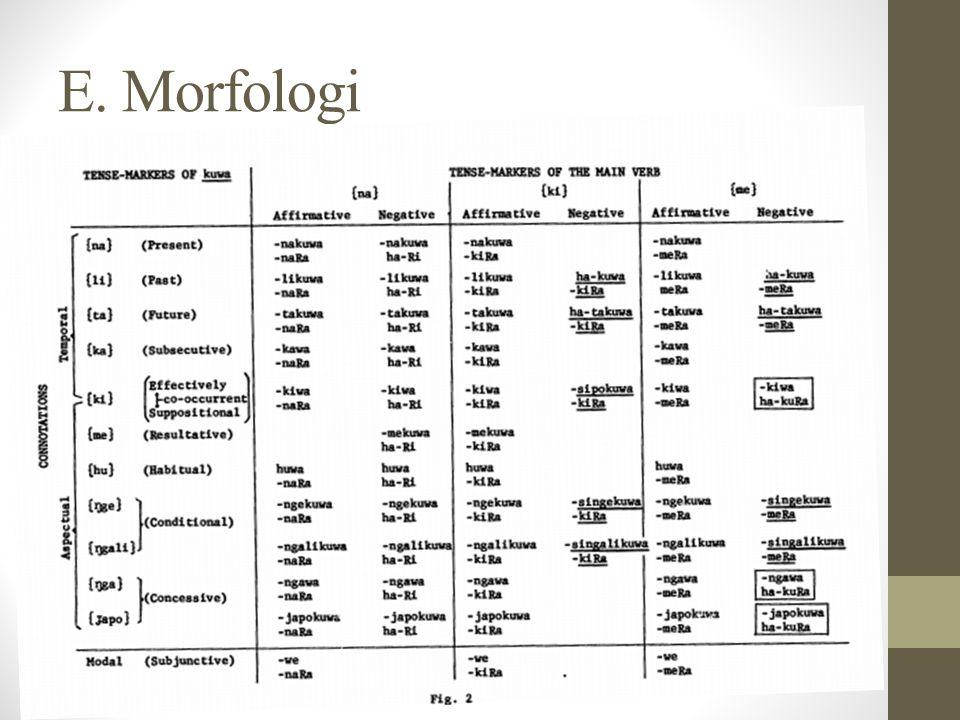 E. Morfologi
