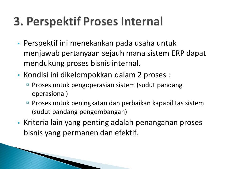  Perspektif ini menekankan pada usaha untuk menjawab pertanyaan sejauh mana sistem ERP dapat mendukung proses bisnis internal.