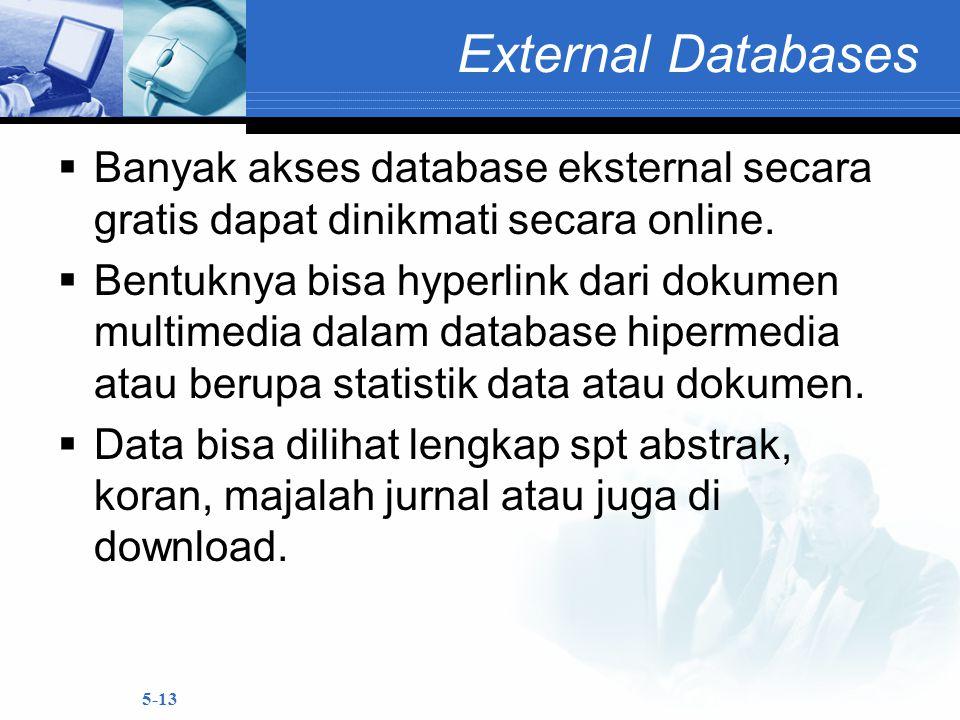 5-13 External Databases  Banyak akses database eksternal secara gratis dapat dinikmati secara online.  Bentuknya bisa hyperlink dari dokumen multime