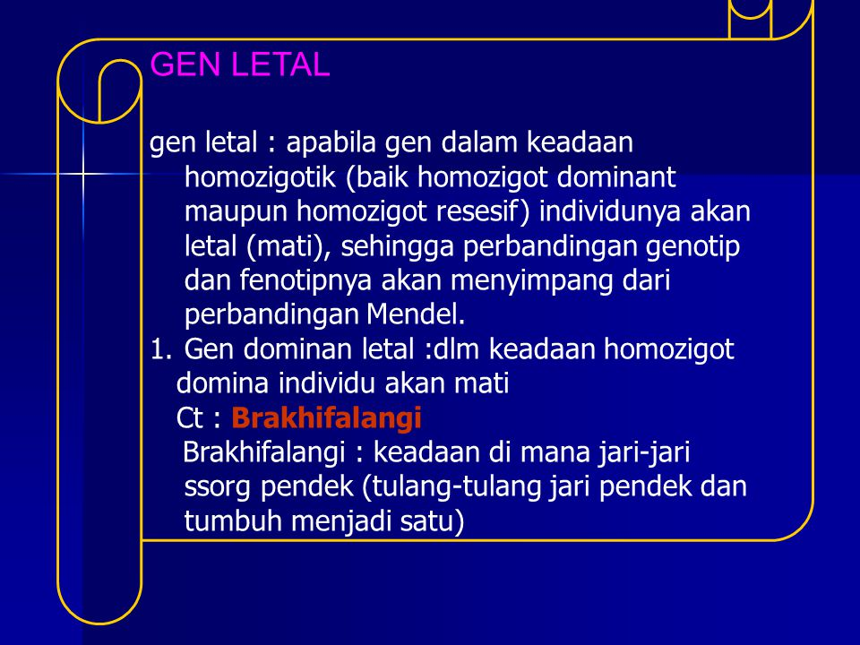 GEN LETAL gen letal : apabila gen dalam keadaan homozigotik (baik homozigot dominant maupun homozigot resesif) individunya akan letal (mati), sehingga