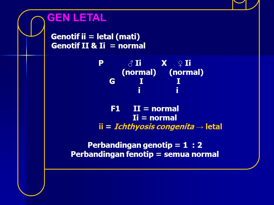 GEN LETAL Genotif ii = letal (mati) Genotif II & Ii = normal P ♂ Ii X ♀ Ii (normal) (normal) G I I i i F1 II = normal Ii = normal ii = Ichthyosis cong