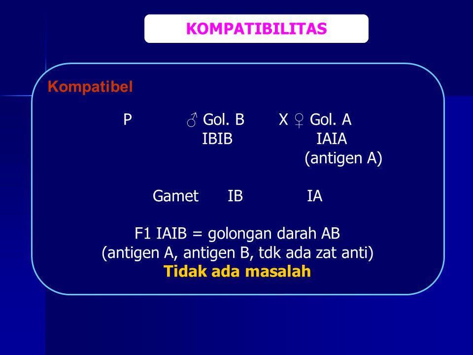 Kompatibel P ♂ Gol. B X ♀ Gol. A IBIB IAIA (antigen A) Gamet IB IA F1 IAIB = golongan darah AB (antigen A, antigen B, tdk ada zat anti) Tidak ada masa