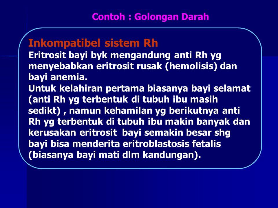Inkompatibel sistem Rh Eritrosit bayi byk mengandung anti Rh yg menyebabkan eritrosit rusak (hemolisis) dan bayi anemia. Untuk kelahiran pertama biasa