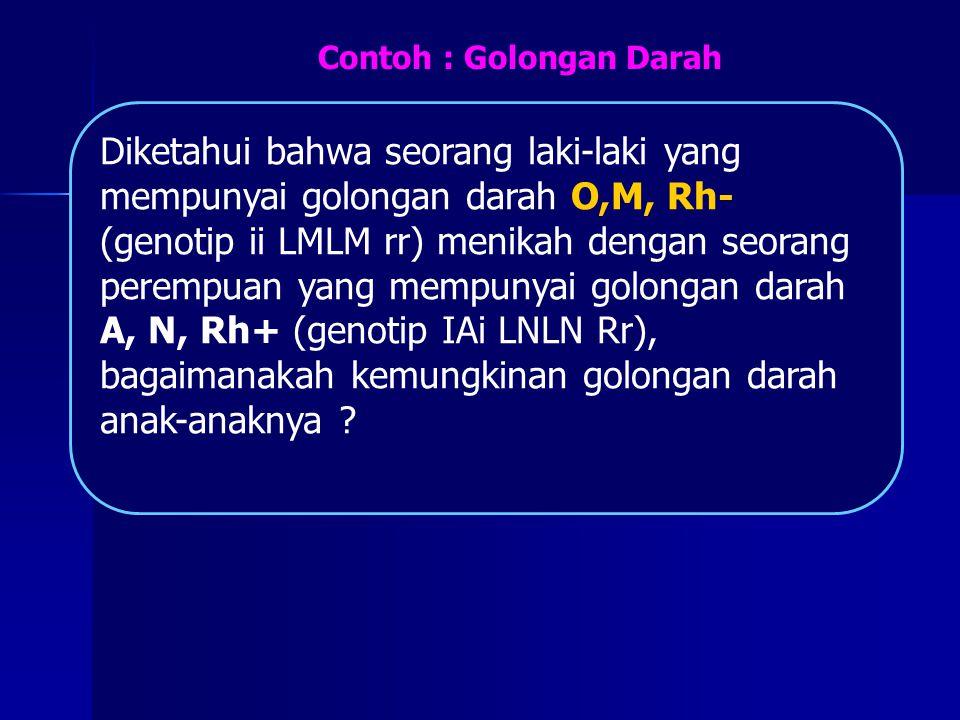 Diketahui bahwa seorang laki-laki yang mempunyai golongan darah O,M, Rh- (genotip ii LMLM rr) menikah dengan seorang perempuan yang mempunyai golongan