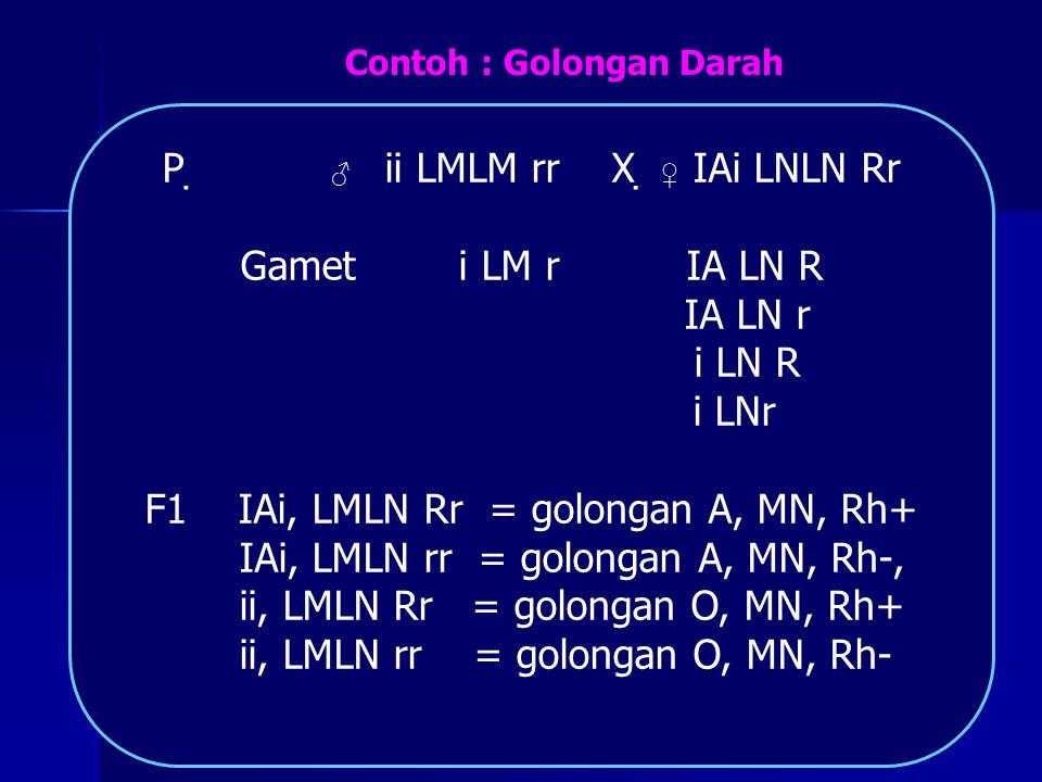 P  ♂ ii LMLM rr X  ♀ IAi LNLN Rr Gamet i LM r IA LN R IA LN r i LN R i LNr F1 IAi, LMLN Rr = golongan A, MN, Rh+ IAi, LMLN rr = golongan A, MN, Rh-,
