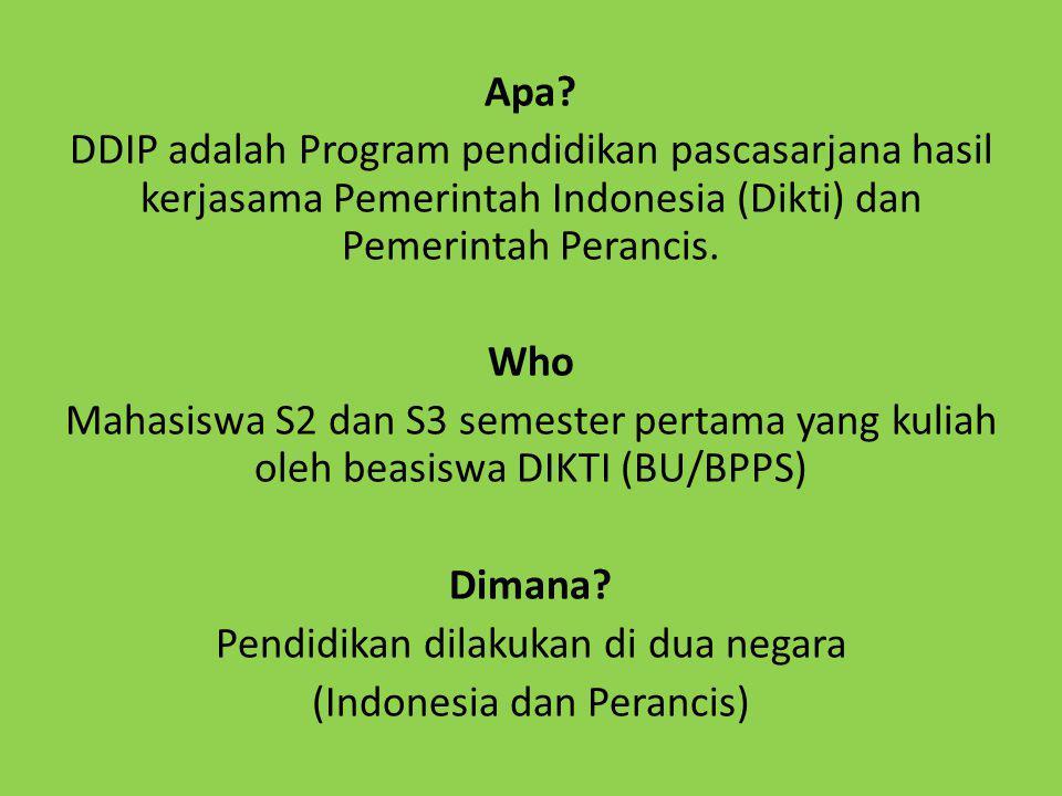 Apa? DDIP adalah Program pendidikan pascasarjana hasil kerjasama Pemerintah Indonesia (Dikti) dan Pemerintah Perancis. Who Mahasiswa S2 dan S3 semeste