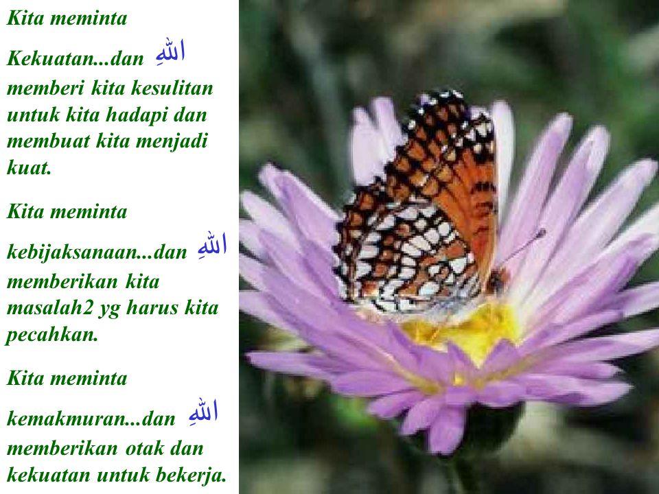 Kita meminta Kekuatan...dan اللهِ memberi kita kesulitan untuk kita hadapi dan membuat kita menjadi kuat.