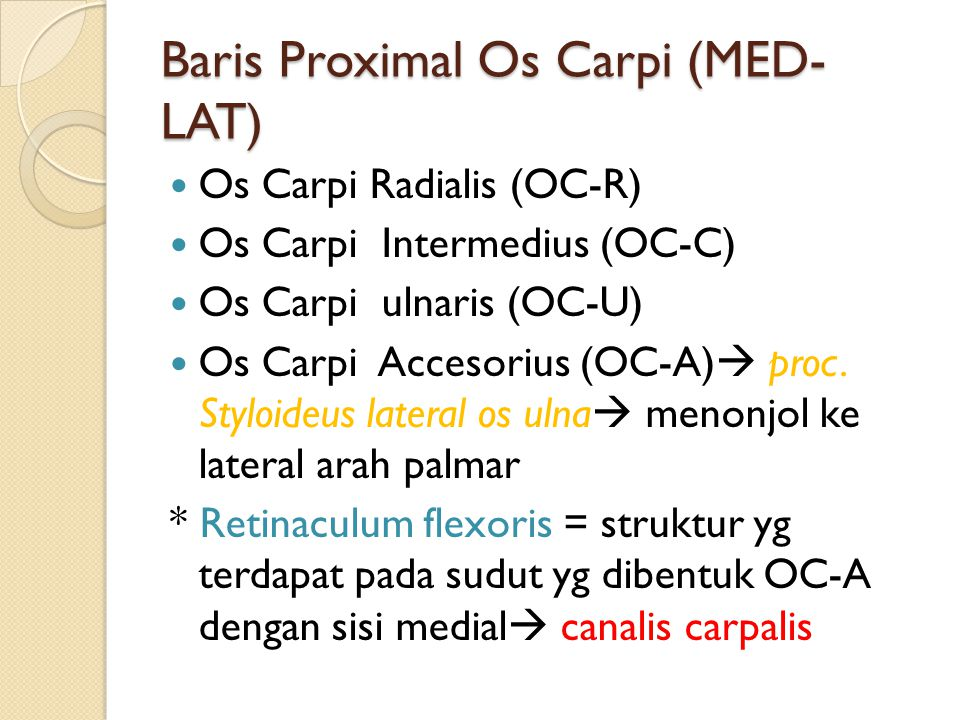 Baris Proximal Os Carpi (MED- LAT) Os Carpi Radialis (OC-R) Os Carpi Intermedius (OC-C) Os Carpi ulnaris (OC-U) Os Carpi Accesorius (OC-A)  proc.