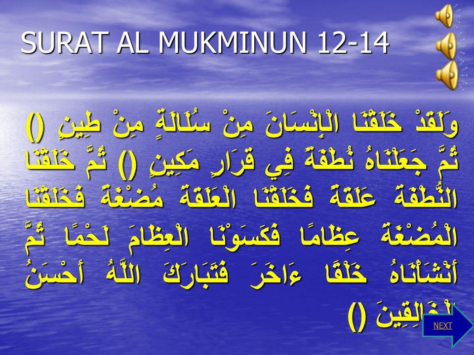 Prilaku Yang Menunjukkan Surat Al Baqarah Ayat 30 Tugas seorang pemimpin dibumi ini adalah tugas yang sangat berat, yaitu bertugas untuk menerima aman