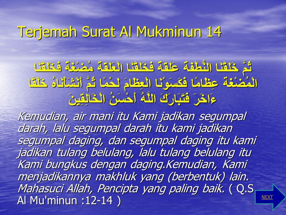 Terjemah Surat Al Mukminun 13 ثُمَّ جَعَلْنَاهُ نُطْفَةً فِي قَرَارٍ مَكِينٍ Kemudian Kami jadikan saripati itu air mani (yang disimpan) dalam tempat