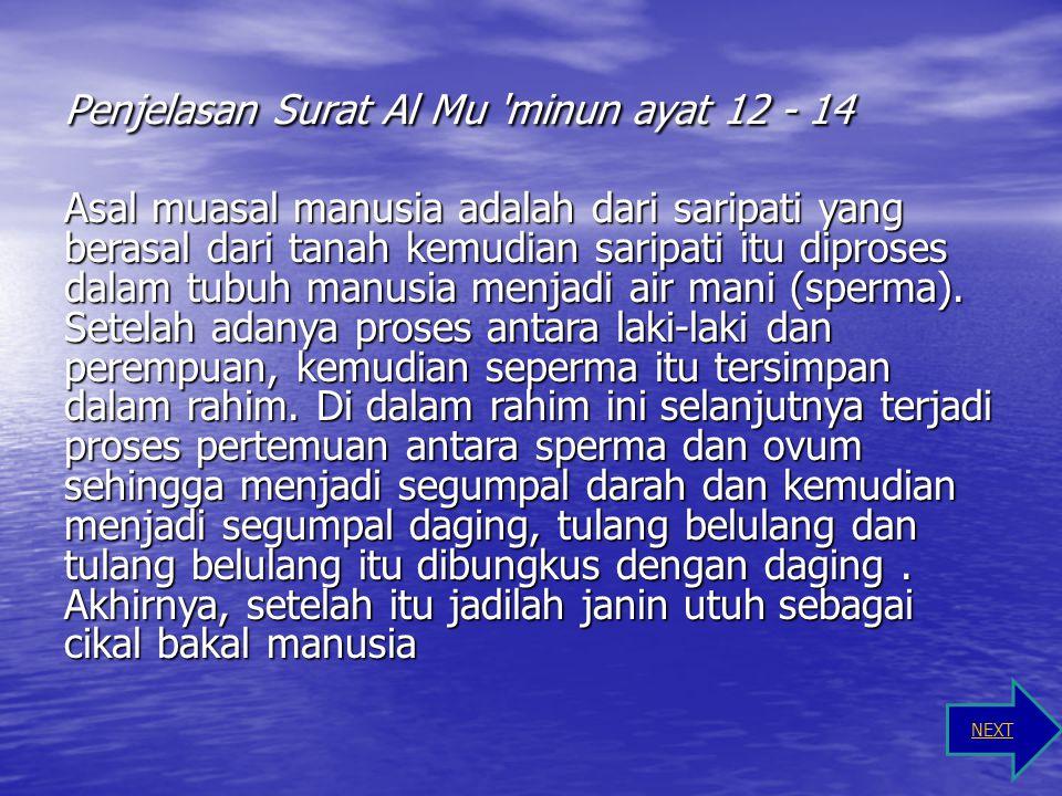 Terjemah Surat Al Mukminun 14 ثُمَّ خَلَقْنَا النُّطْفَةَ عَلَقَةً فَخَلَقْنَا الْعَلَقَةَ مُضْغَةً فَخَلَقْنَا الْمُضْغَةَ عِظَامًا فَكَسَوْنَا الْعِ