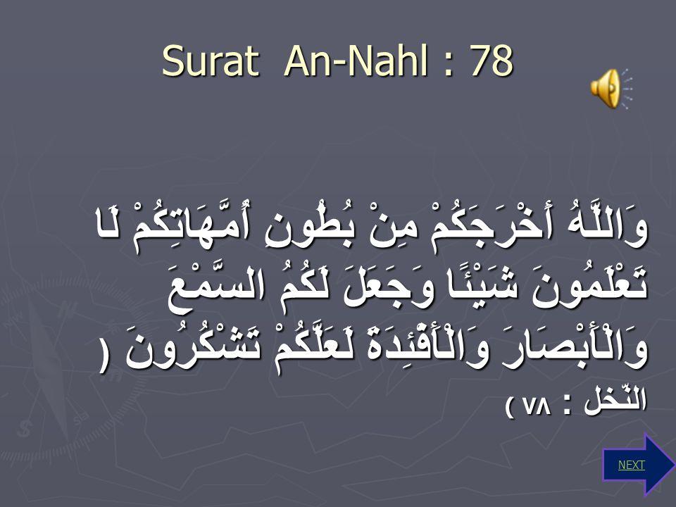 Kesimpulan kandungan ayat Surat Az-Zariat : 56 Manusia dan jin diciptakan oleh Allah SWT Manusia dan jin diciptakan oleh Allah SWT Manusia dan jin mem