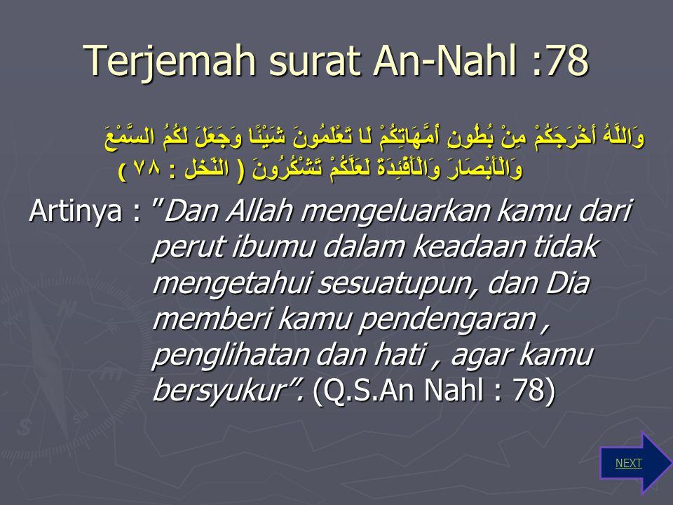 Arti Kata Surat An-Nahl : 78 ► وَاللَّهُ Dan Allah SWT ► أَخْرَجَكُمْ Telah mengeluarkan kamu ► مِنْ بُطُونِ dari perut ► أُمَّهَاتِكُمْ ibu-ibu kamu