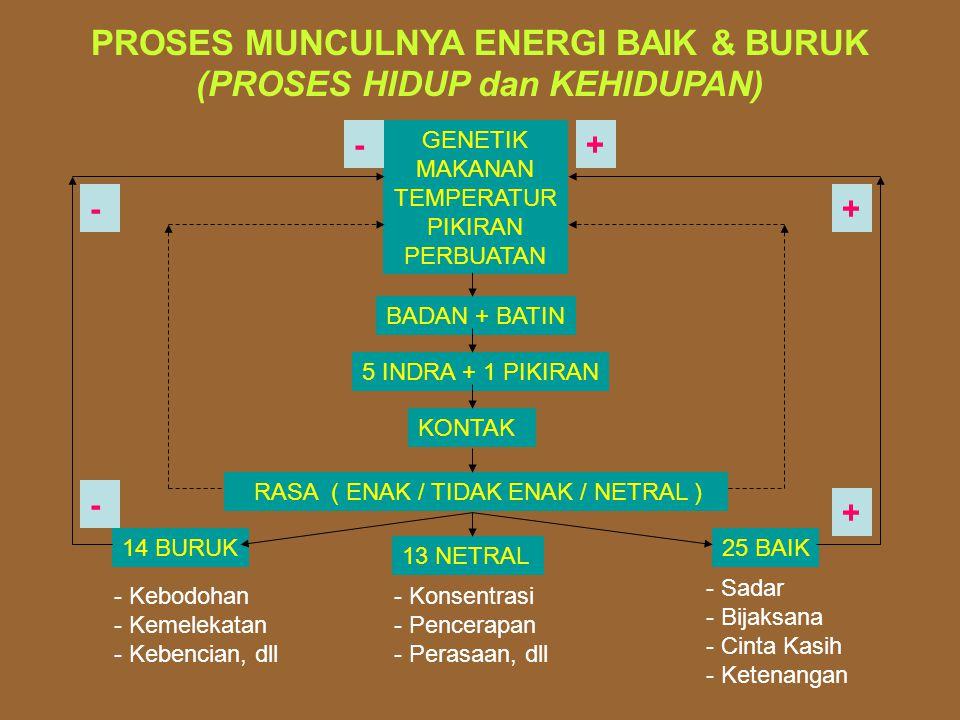 PROSES MUNCULNYA ENERGI BAIK & BURUK (PROSES HIDUP dan KEHIDUPAN) GENETIK MAKANAN TEMPERATUR PIKIRAN PERBUATAN BADAN + BATIN 5 INDRA + 1 PIKIRAN KONTAK RASA ( ENAK / TIDAK ENAK / NETRAL ) 14 BURUK 13 NETRAL 25 BAIK - Kebodohan - Kemelekatan - Kebencian, dll - Konsentrasi - Pencerapan - Perasaan, dll - Sadar - Bijaksana - Cinta Kasih - Ketenangan + + + - - -