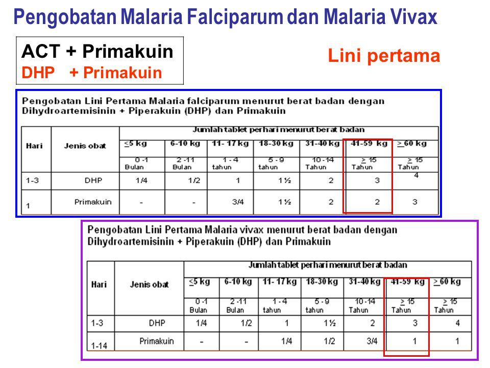 ACT + Primakuin DHP + Primakuin Pengobatan Malaria Falciparum dan Malaria Vivax Lini pertama