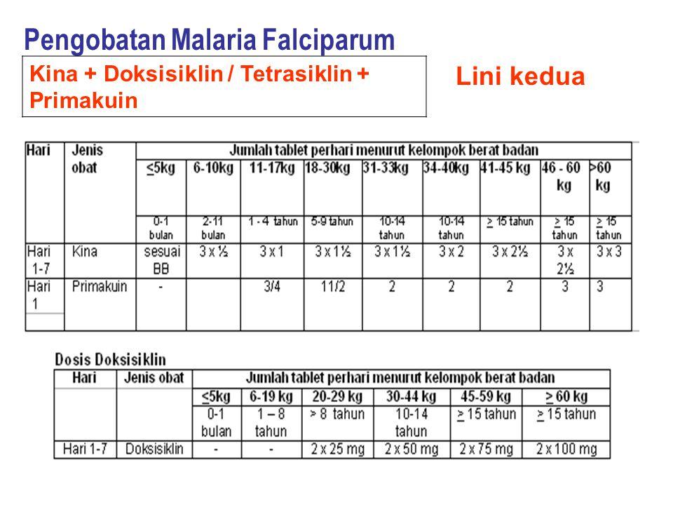 Pengobatan Malaria Falciparum Lini kedua Kina + Doksisiklin / Tetrasiklin + Primakuin