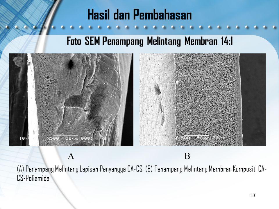 Hasil dan Pembahasan Foto SEM Penampang Melintang Membran 14:1 13 (A) Penampang Melintang Lapisan Penyangga CA-CS, (B) Penampang Melintang Membran Komposit CA- CS-Poliamida AB