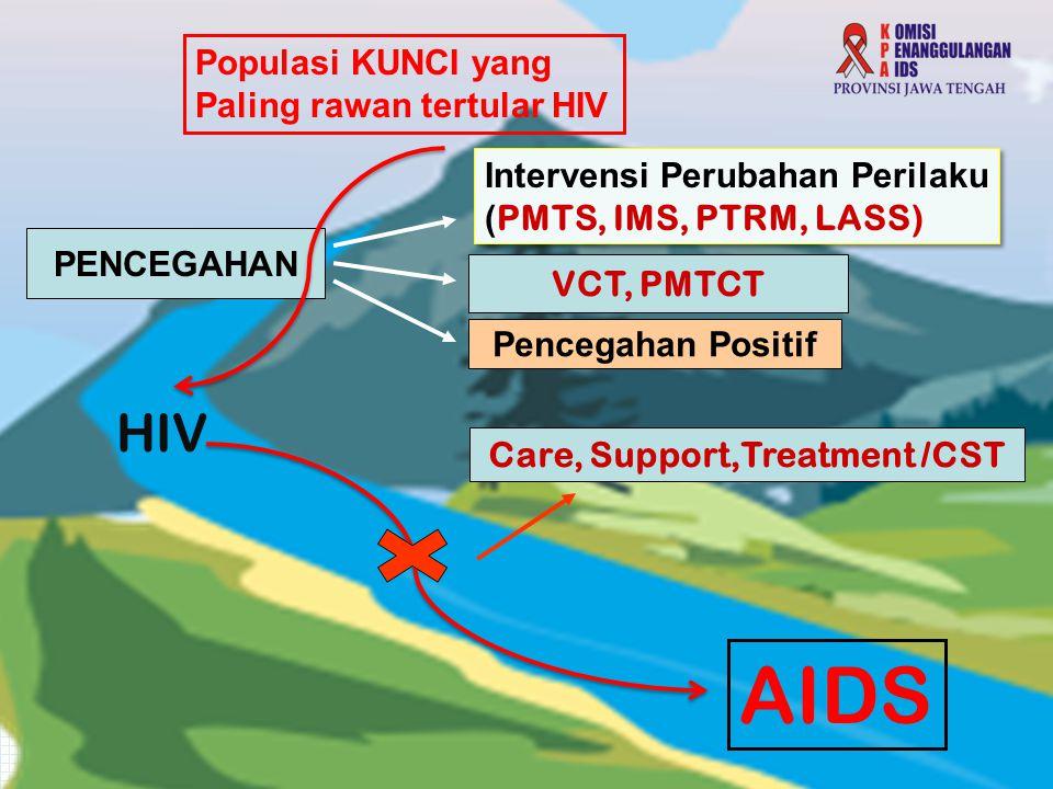 Populasi KUNCI yang Paling rawan tertular HIV Intervensi Perubahan Perilaku ( PMTS, IMS, PTRM, LASS) Intervensi Perubahan Perilaku ( PMTS, IMS, PTRM, LASS) AIDS HIV VCT, PMTCT Pencegahan Positif PENCEGAHAN Care, Support,Treatment /CST
