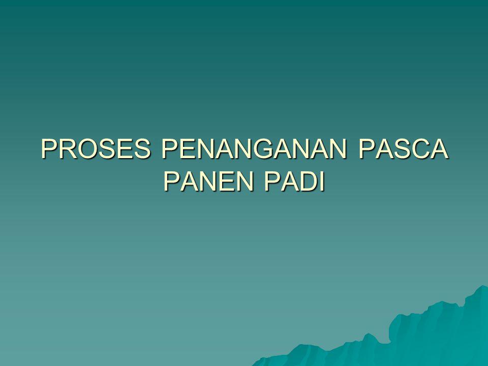 PROSES PENANGANAN PASCA PANEN PADI