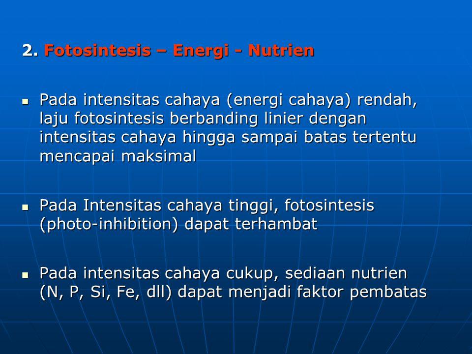 2. Fotosintesis – Energi - Nutrien Pada intensitas cahaya (energi cahaya) rendah, laju fotosintesis berbanding linier dengan intensitas cahaya hingga