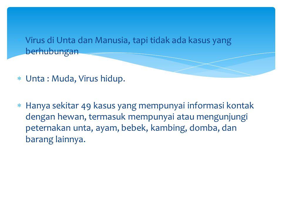  Virus di Unta dan Manusia, tapi tidak ada kasus yang berhubungan  Unta : Muda, Virus hidup.  Hanya sekitar 49 kasus yang mempunyai informasi konta
