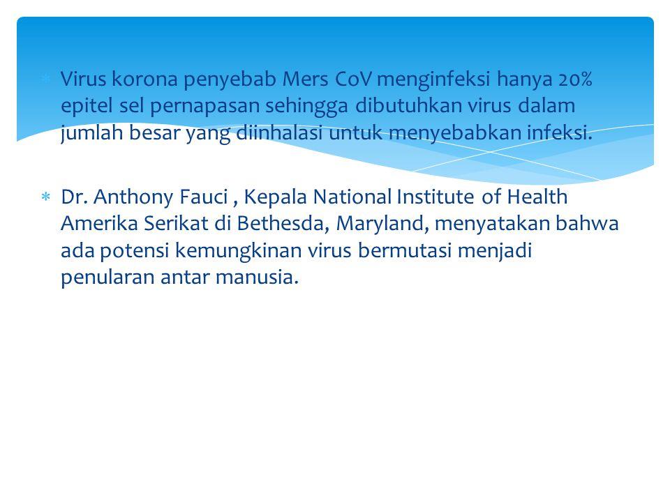  Virus korona penyebab Mers CoV menginfeksi hanya 20% epitel sel pernapasan sehingga dibutuhkan virus dalam jumlah besar yang diinhalasi untuk menyebabkan infeksi.