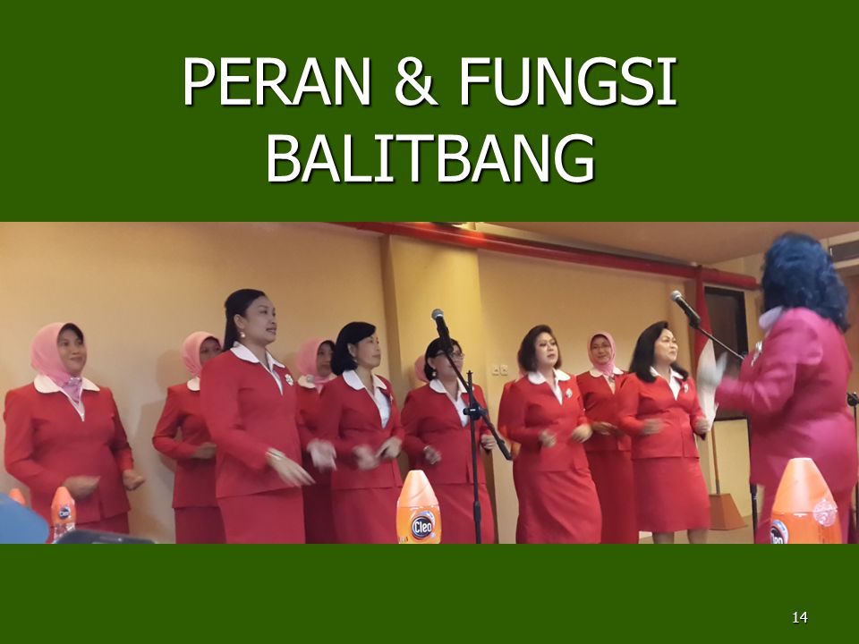 PERAN & FUNGSI BALITBANG 14