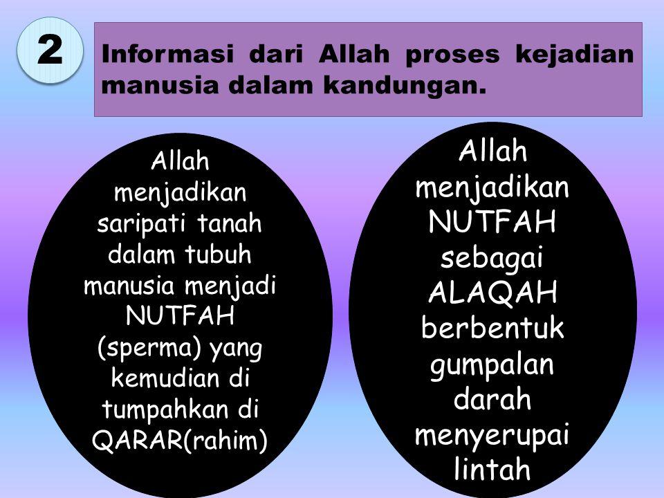 2 2 Informasi dari Allah proses kejadian manusia dalam kandungan.