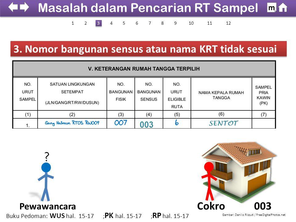 3. Nomor bangunan sensus atau nama KRT tidak sesuai 003Cokro 003 SENTOT ? Gambar: Danilo Rizzuti / FreeDigitalPhotos.net Masalah dalam Pencarian RT Sa