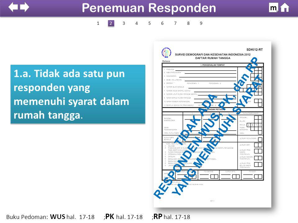 1.a. Tidak ada satu pun responden yang memenuhi syarat dalam rumah tangga. TIDAK ADA RESPONDEN WUS, PK, dan RP YANG MEMENUHI SYARAT 100% SDKI 2012 Pen