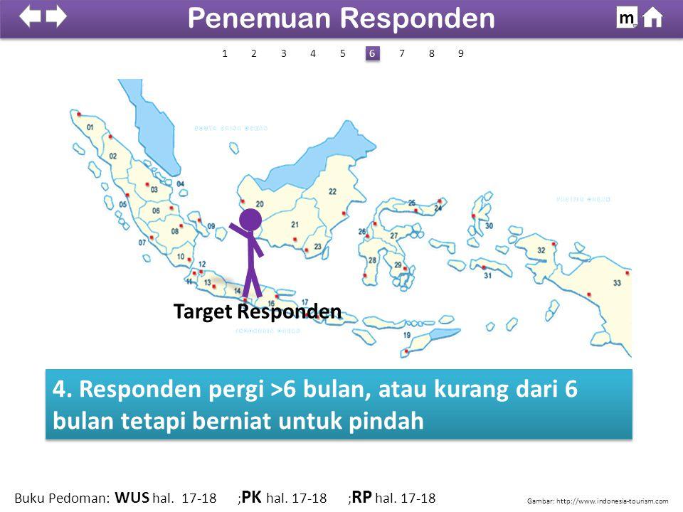 4. Responden pergi >6 bulan, atau kurang dari 6 bulan tetapi berniat untuk pindah Gambar: http://www.indonesia-tourism.com 100% SDKI 2012 Penemuan Res