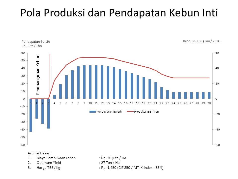 Pola Produksi dan Pendapatan Kebun Inti Asumsi Dasar : 1.Biaya Pembukaan Lahan : Rp. 70 juta / Ha 2.Optimum Yield: 27 Ton / Ha 3.Harga TBS / Kg: Rp. 1