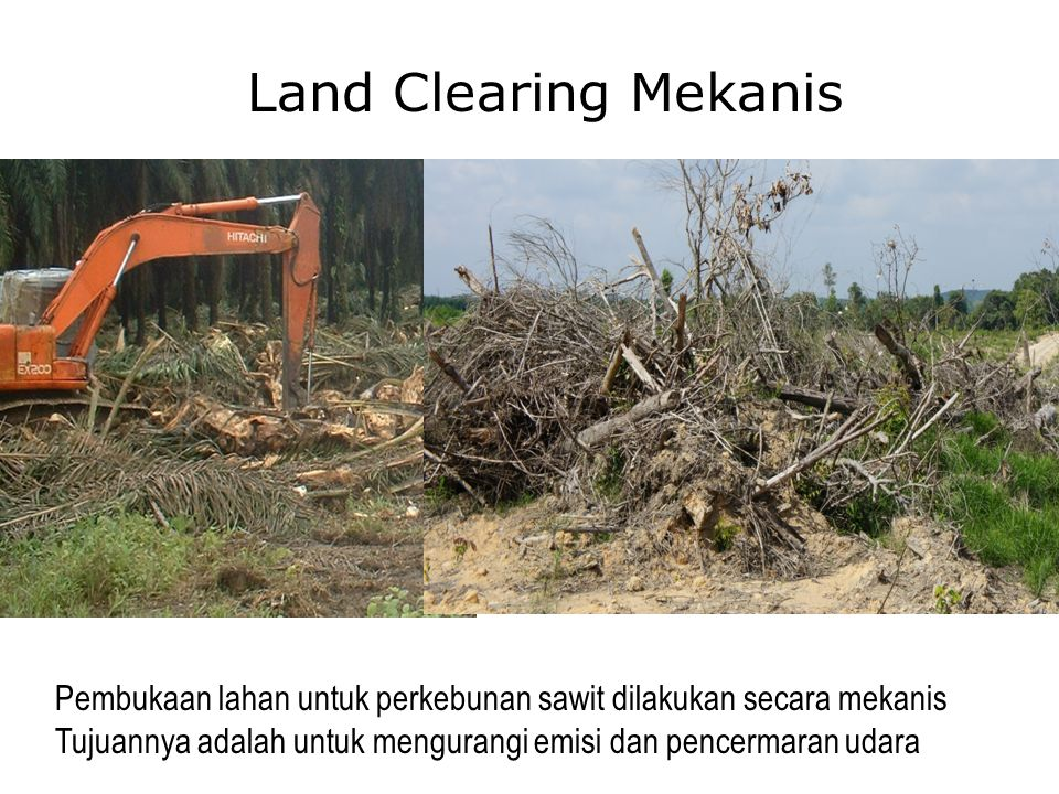 Land Clearing Mekanis Pembukaan lahan untuk perkebunan sawit dilakukan secara mekanis Tujuannya adalah untuk mengurangi emisi dan pencermaran udara