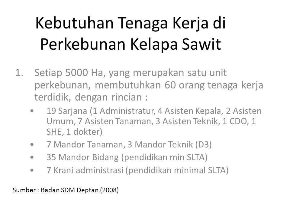 Kebutuhan Tenaga Kerja di Perkebunan Kelapa Sawit 1.Setiap 5000 Ha, yang merupakan satu unit perkebunan, membutuhkan 60 orang tenaga kerja terdidik, d