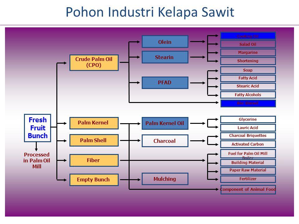 Indonesia Poverty Line (Rp 248.000/month) FAO Poverty Line (Rp 400.000/month) Pendapatan Petani Sawit (Petani Plasma IGA di Kalteng, kebun ditanam th 2003)