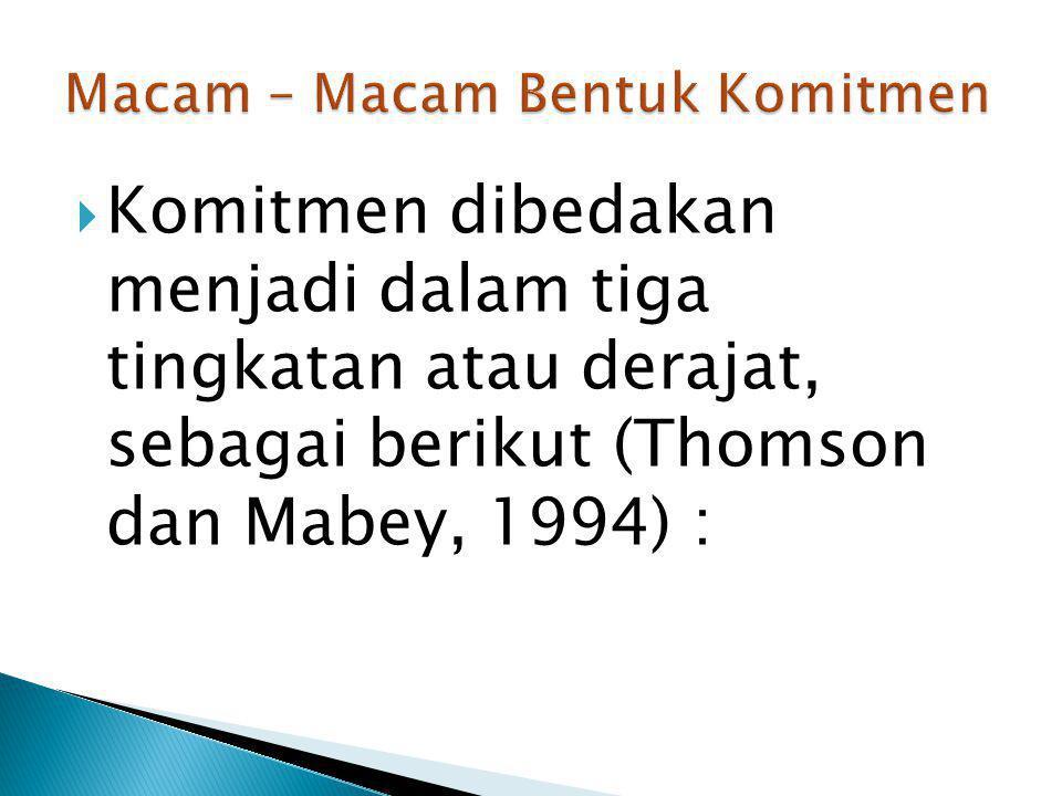  Komitmen dibedakan menjadi dalam tiga tingkatan atau derajat, sebagai berikut (Thomson dan Mabey, 1994) :