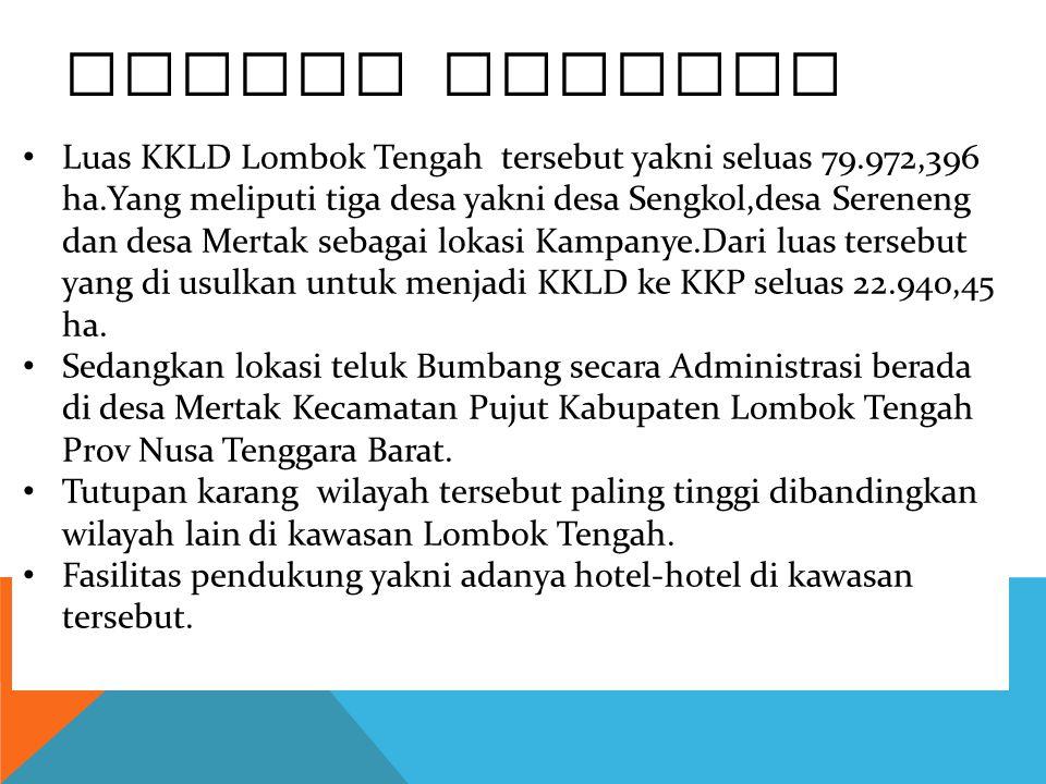 PROFIL KAWASAN Luas KKLD Lombok Tengah tersebut yakni seluas 79.972,396 ha.Yang meliputi tiga desa yakni desa Sengkol,desa Sereneng dan desa Mertak se