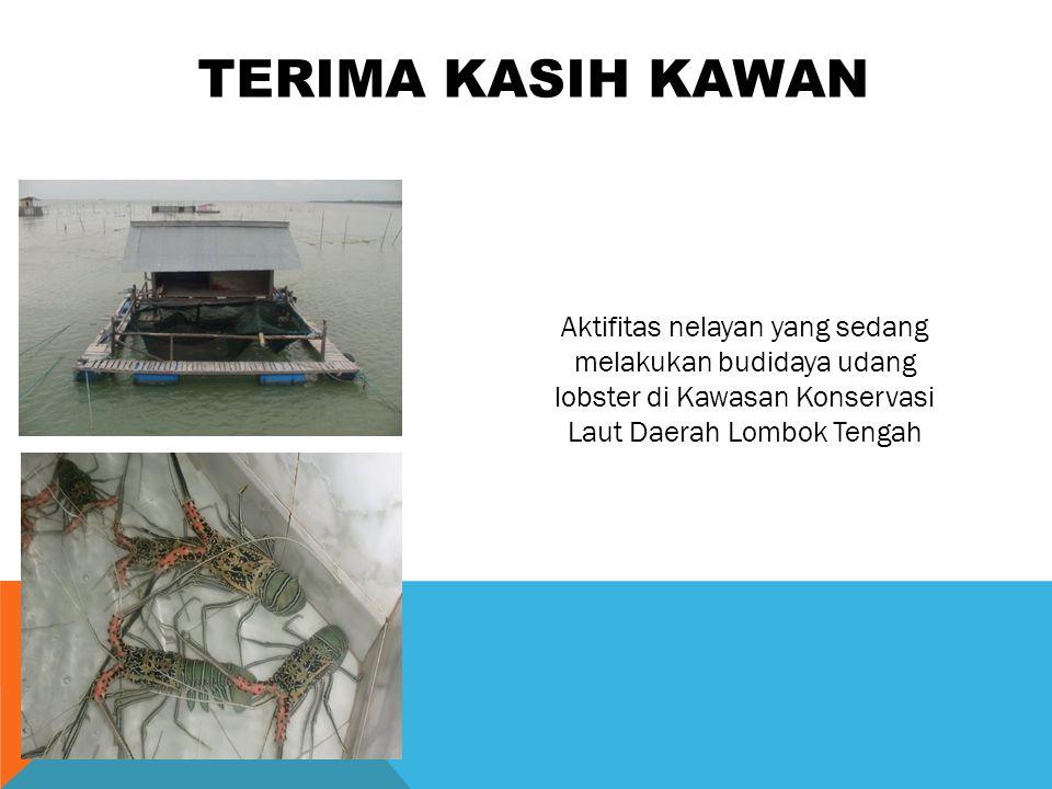 TERIMA KASIH KAWAN Aktifitas nelayan yang sedang melakukan budidaya udang lobster di Kawasan Konservasi Laut Daerah Lombok Tengah