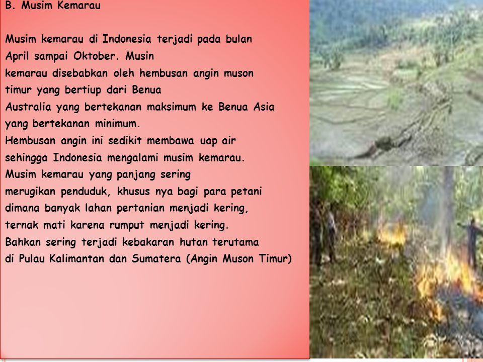 B. Musim Kemarau Musim kemarau di Indonesia terjadi pada bulan April sampai Oktober. Musin kemarau disebabkan oleh hembusan angin muson timur yang ber