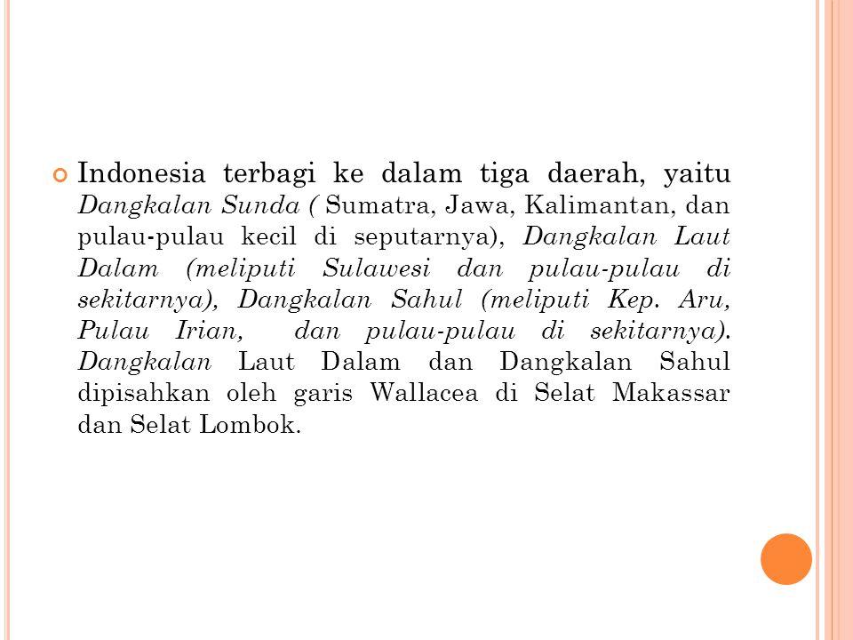 Indonesia terbagi ke dalam tiga daerah, yaitu Dangkalan Sunda ( Sumatra, Jawa, Kalimantan, dan pulau-pulau kecil di seputarnya), Dangkalan Laut Dalam
