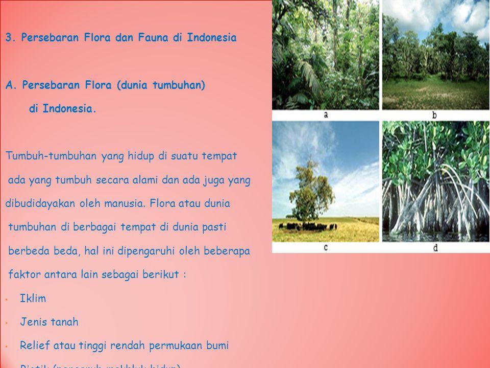 3. Persebaran Flora dan Fauna di Indonesia A. Persebaran Flora (dunia tumbuhan) di Indonesia. Tumbuh-tumbuhan yang hidup di suatu tempat ada yang tumb