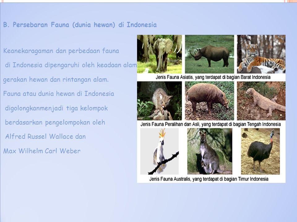 B. Persebaran Fauna (dunia hewan) di Indonesia Keanekaragaman dan perbedaan fauna di Indonesia dipengaruhi oleh keadaan alam, gerakan hewan dan rintan
